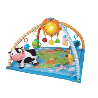 Little Friendlies 2-in-1 Baby Gym